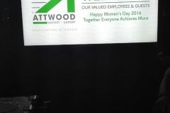 Artwood-60-24
