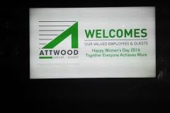 Artwood-60-26